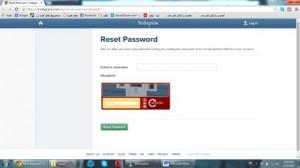 reset-instagram-password-screenshot